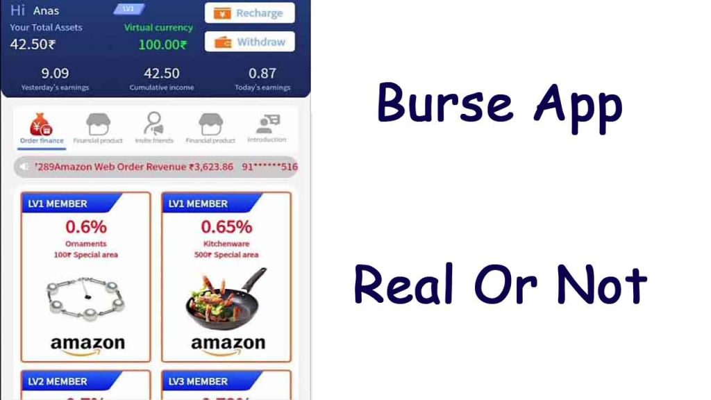 Burse App Real hai ya Fake